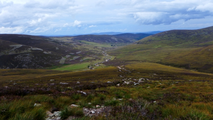 Mount Keen Stravaiging Fungle road Wild Ride 13