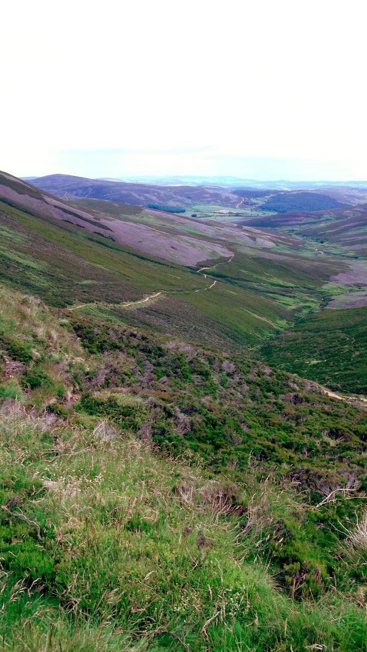 Mount Keen Stravaiging Fungle road Wild Ride 20