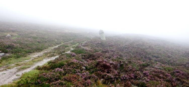 Mount Keen Stravaiging Fungle road Wild Ride Hill Fog 2