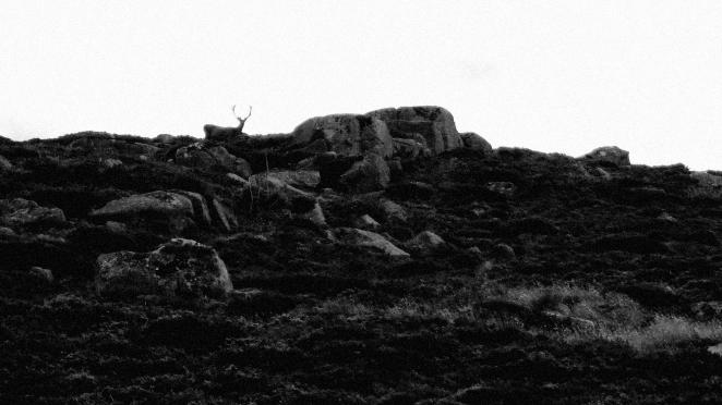 Stravaiging Broadcairn Lochnager Loch Muick 12
