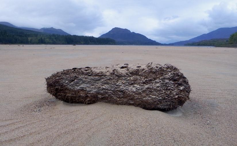 Loch Washed Peat