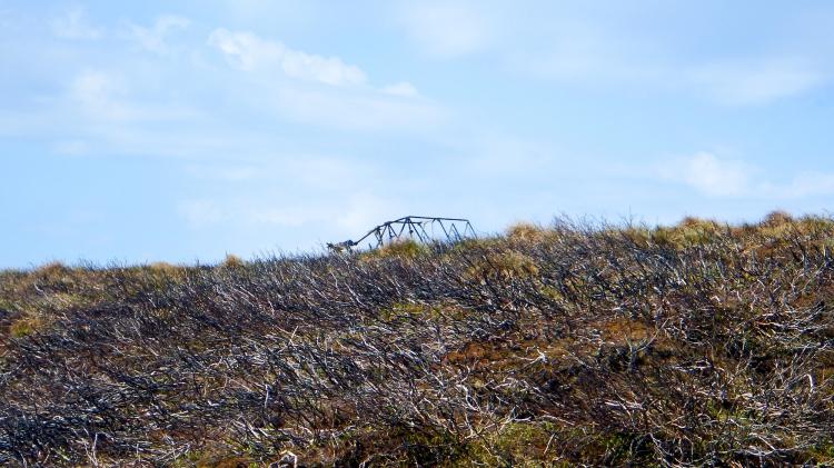 Glen Dye ww2 Plane wreck
