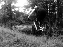 Steep roll in