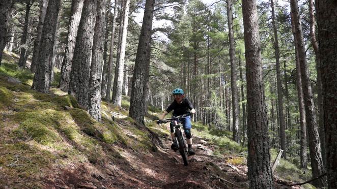 Mastermind Mountain Biking Enduro singletrack