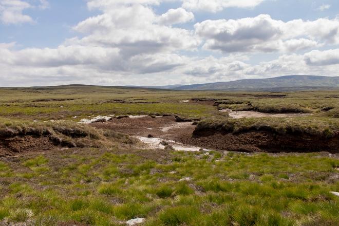 Peat Pools